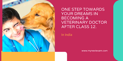 One Step Towards Your Dreams In Becoming A Veterinary Doctor After 12