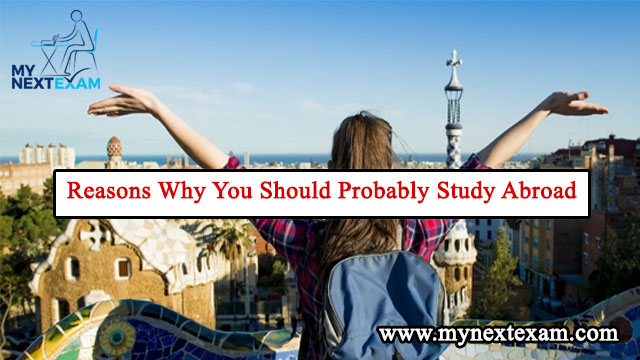 Reasons Why You Should Probably Study Abroad