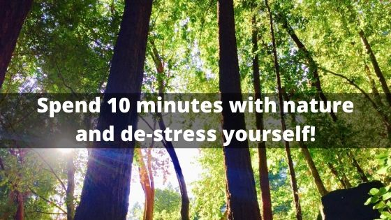Spend 10 minutes with nature and de-stress yourself!