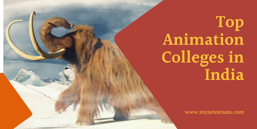 Top Animation Colleges in India